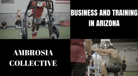 Mike Rashid and Sean Torbati in Arizona - Business and TRAINING