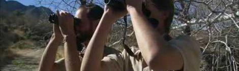 Birding: Big Business in Arizona